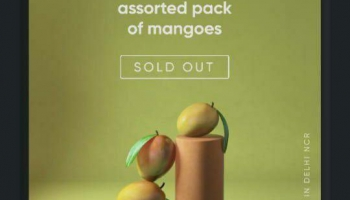 Cred loot offer : 100% off Mangoes at ₹1