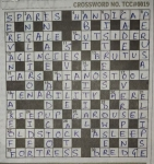 TOI Crossword free Voucher loot : Today Answer Image