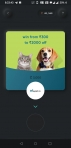 Free pet food from cred supertails
