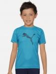 Boys Printed Polyester T Shirt