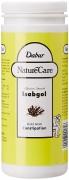 Dabur Nature Care Isabgol – 375 g