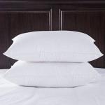 Top Offer on Noktok Sleeping Pillow, Pack of 2, 75% Off Deal